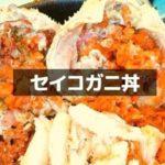 "<span class=""title"">福井の越前海岸でセイコ丼が食べれるお店【2020年】予約なしでもOK</span>"