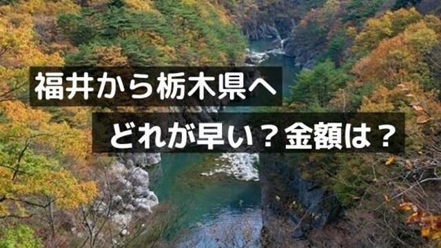 福井県から栃木へ