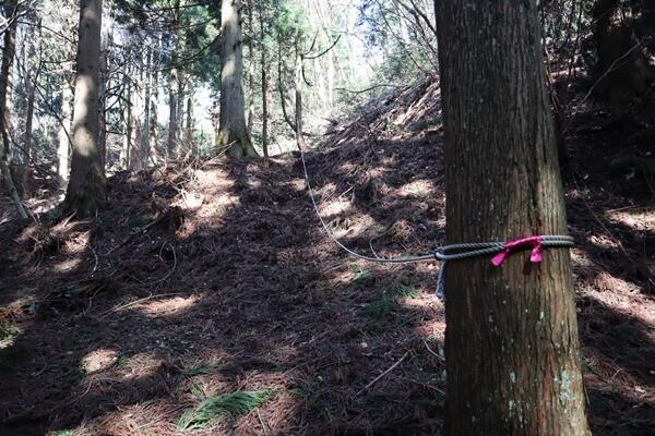 登山道のロープ