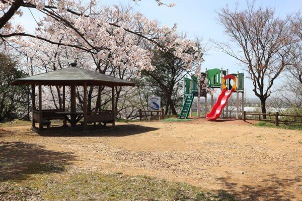 昭和公園の広場