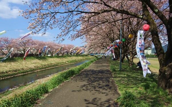 浅水川の堤防