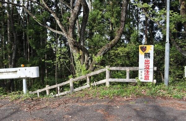 東山公園の熊の看板