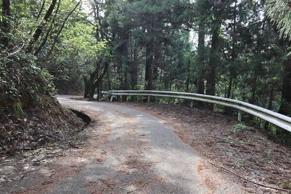 東山公園の道