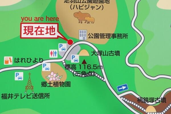 足羽山の山頂の地図