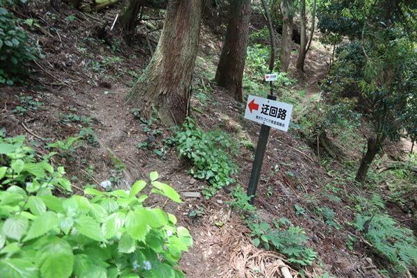 和田コース登山道