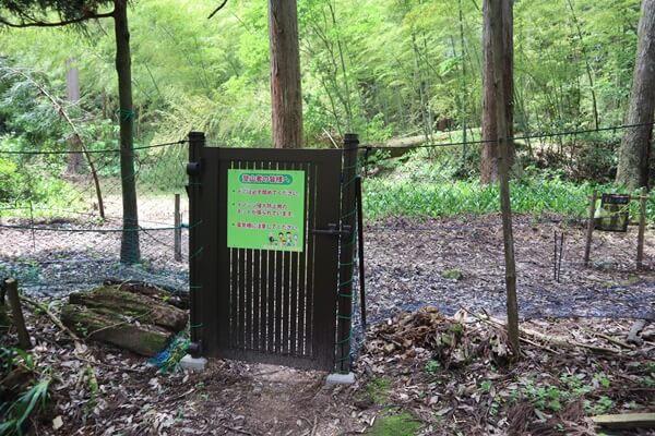 入り口には柵があります