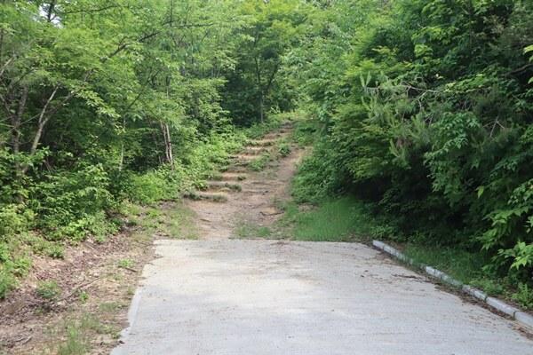 舗装が切れて、登山道が出現