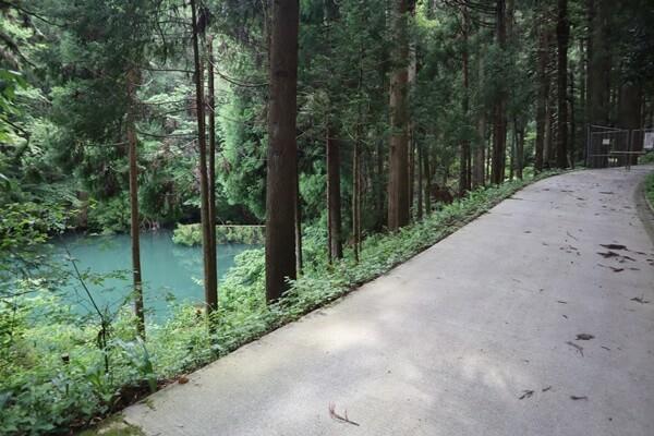 三床山の石生谷林道コース
