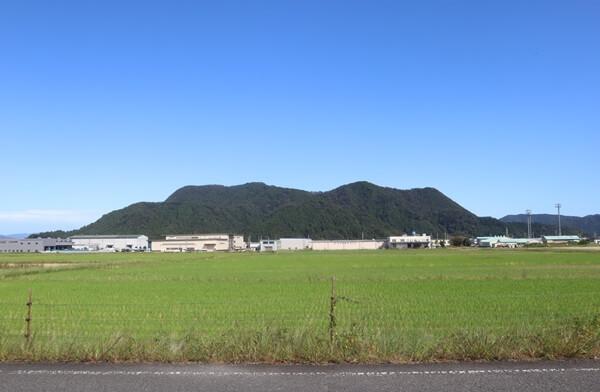 越前市の山