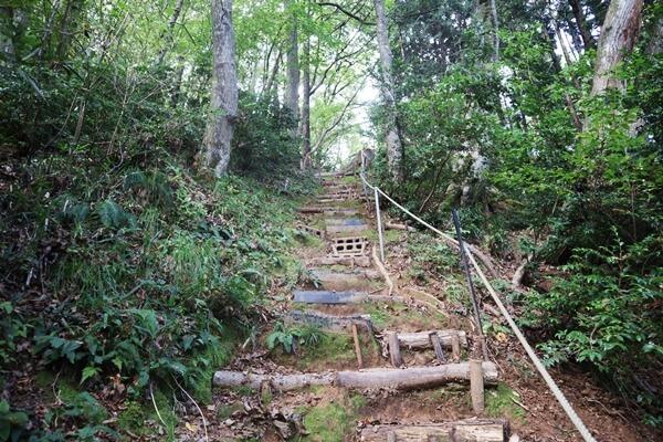 下市山の登山道
